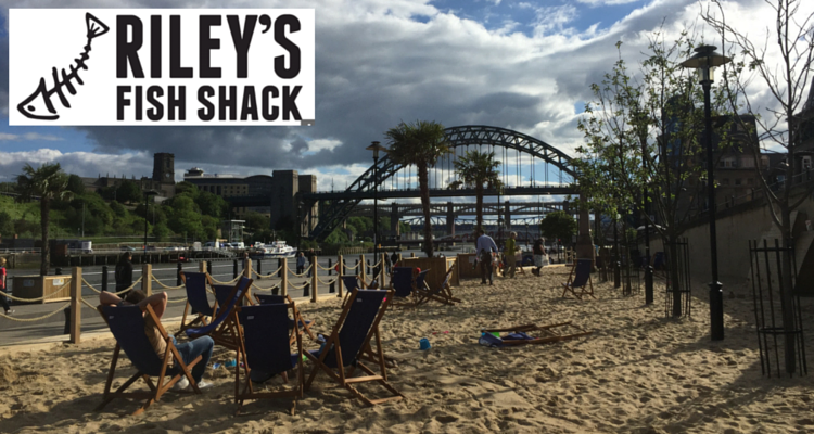 rileys fish shack review