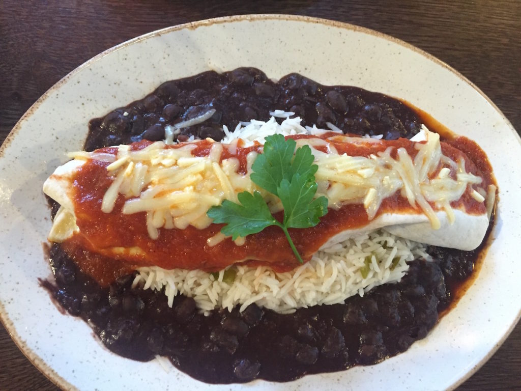 las iguanas chicken enchiladas